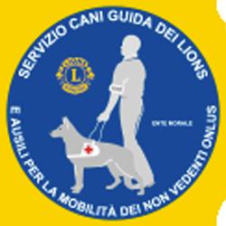 Cani Guida Lions